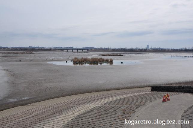 谷中湖の干し上げ(4)3