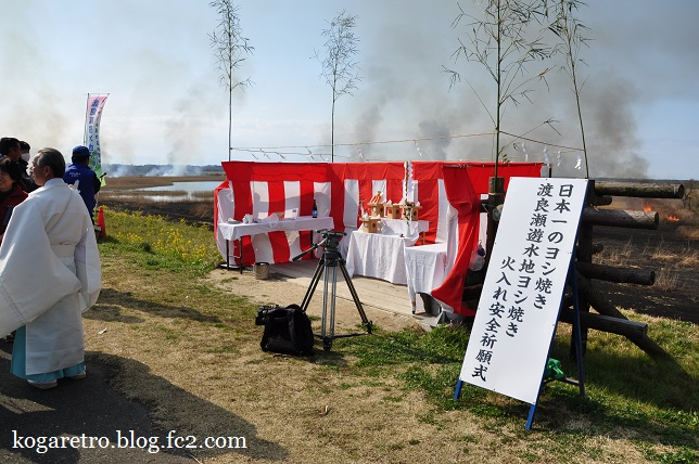 2016渡良瀬遊水地のヨシ焼き4