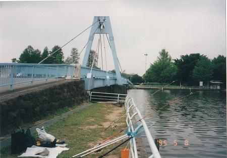 水元大橋横の釣り
