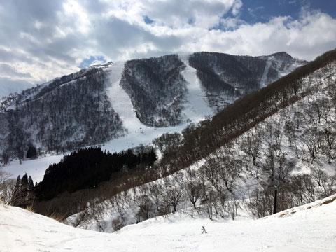 ラビットコースから稗田山コース2&3