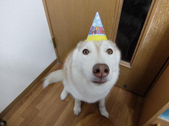 160328 誕生日08