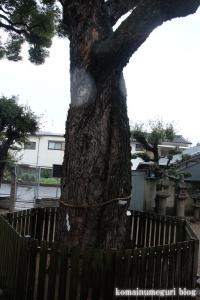 比枝神社(鶴見区今津中)22