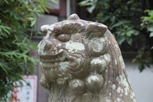 岸城神社(岸和田市岸城町)12