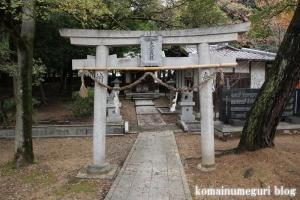 兵主神社(岸和田市西之内町)36
