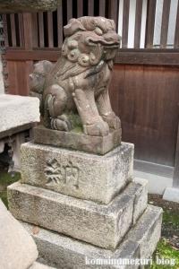 泉穴師神社(泉大津市豊中町)34
