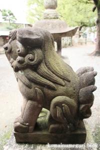 泉穴師神社(泉大津市豊中町)36