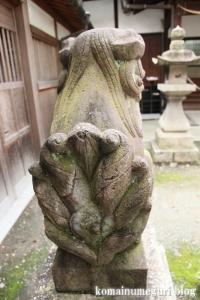 泉穴師神社(泉大津市豊中町)37
