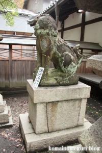 泉穴師神社(泉大津市豊中町)54