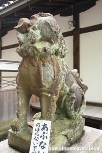 泉穴師神社(泉大津市豊中町)55