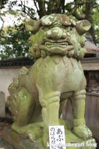 泉穴師神社(泉大津市豊中町)59