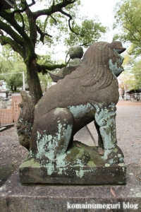 泉穴師神社(泉大津市豊中町)56
