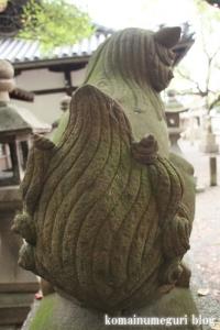 泉穴師神社(泉大津市豊中町)61