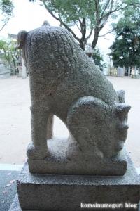 鋸尾八幡神社(堺市西区津久野町)22