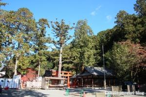 吉田神社(左京区吉田神楽岡町)61