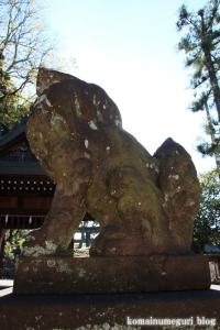 吉田神社(左京区吉田神楽岡町)80