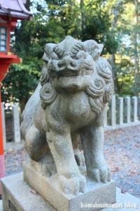 吉田神社(左京区吉田神楽岡町)40