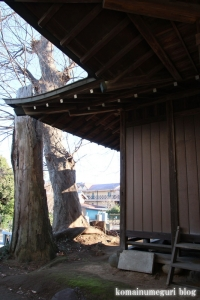 稲荷神社(さいたま市緑区下山口新田)8