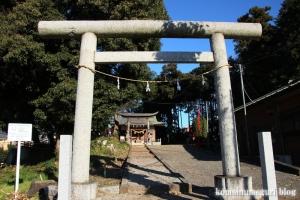 氷川神社(川口市柳崎)2