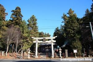 大谷口氷川神社(さいたま市南区大谷口)1