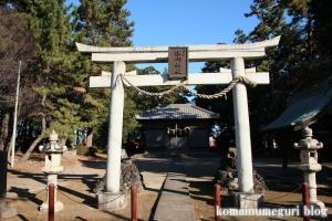 大谷口氷川神社(さいたま市南区大谷口)2