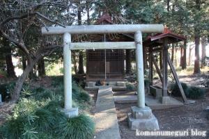 大谷口氷川神社(さいたま市南区大谷口)11