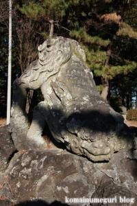 大谷口氷川神社(さいたま市南区大谷口)28