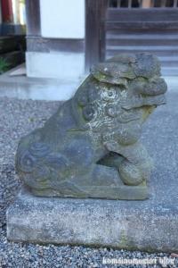 前川神社(川口市前川町)37