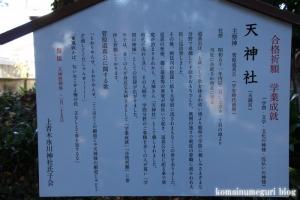 氷川神社(川口市上青木)16