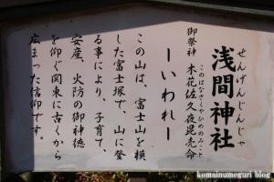氷川神社(川口市青木)7
