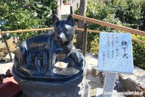 氷川神社(川口市青木)45