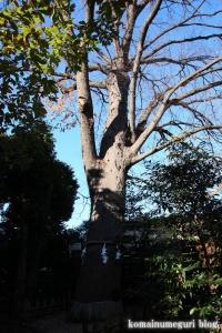 氷川神社(川口市青木)26