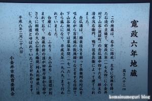 大嶽神社(小金井市緑町)6