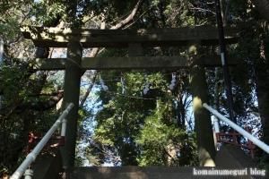 元町八幡神社(国分寺市西元町)2