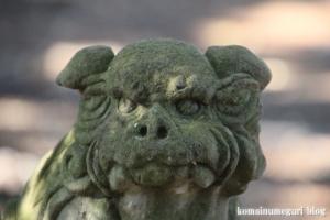 元町八幡神社(国分寺市西元町)20