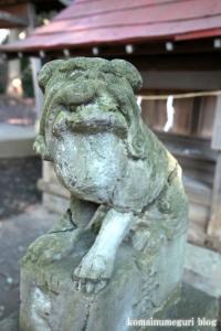元町八幡神社(国分寺市西元町)12