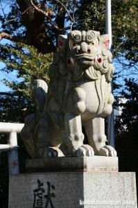 熊野神社(国分寺市西恋ヶ窪)11