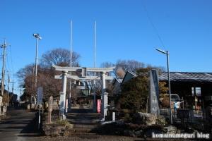 姫宮神社(南埼玉郡宮代町姫宮)1