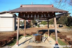 姫宮神社(南埼玉郡宮代町姫宮)8