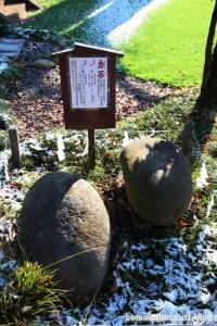 姫宮神社(南埼玉郡宮代町姫宮)34