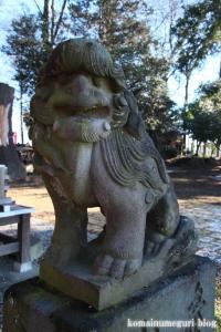 姫宮神社(南埼玉郡宮代町姫宮)25