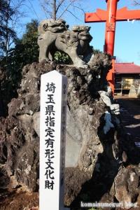 五社神社(南埼玉郡宮代町東)23