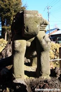 五社神社(南埼玉郡宮代町東)26