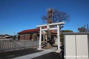 香取神社(北葛飾郡杉戸町本郷)1
