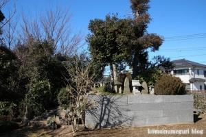雷電神社(北葛飾郡杉戸町本郷)12