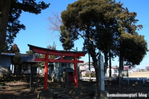 八坂神社(北葛飾郡杉戸町大塚)1