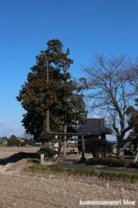 八幡神社(北葛飾郡杉戸町才羽)1