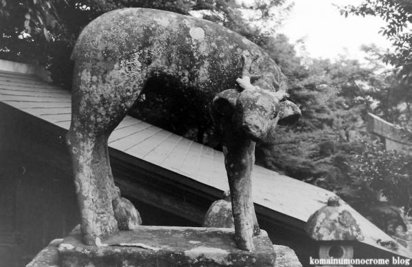 春日神社(松江市奥谷町)17
