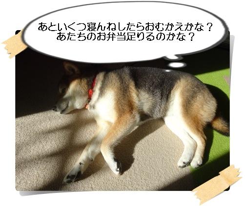 komaro201501229_2.jpg