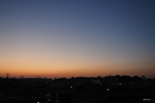 P2190008-s.jpg