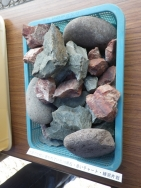 池の底の飾り石